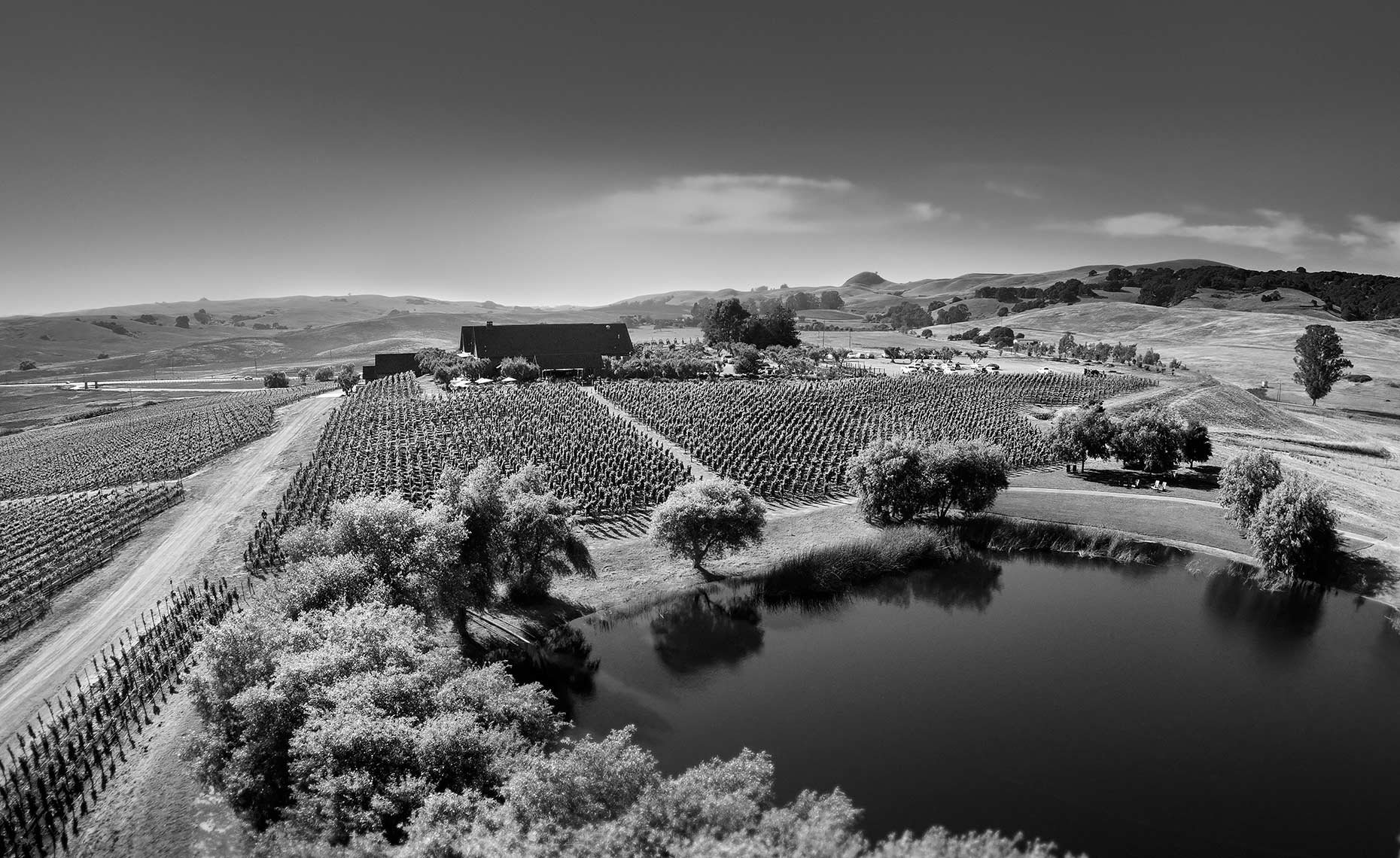 rams gate winery aerial